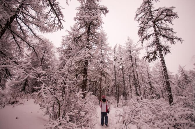В альплагере в день спасработ снег не переставал сыпать. Снежная сказка, которой никто не любовался.