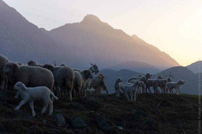 Индия, Гималаи, Возвращение из Драмсалы в Бир (Воздух, бивак-флай, параплан, полет)