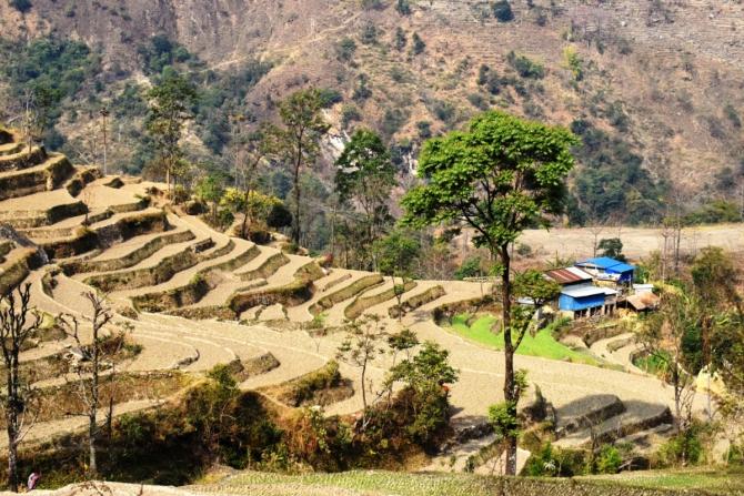 """Трек вокруг Аннапурны или """"Пособие о том, как съездить в Непал и вернуться другим человеком"""". Часть I. (Путешествия)"""