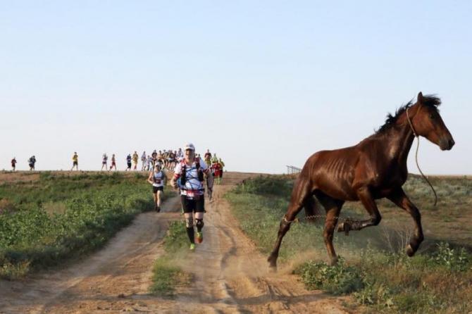 Мaрaфoн пустынных степей ждёт! (Скайраннинг, Elton Ultra Trail, трейлраннинг, гонки, забег, озеро эльтон, волгоградская область)