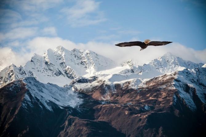 Как жаль, что горы снова забирают. Памяти Лизы Горкиной. (Альпинизм)
