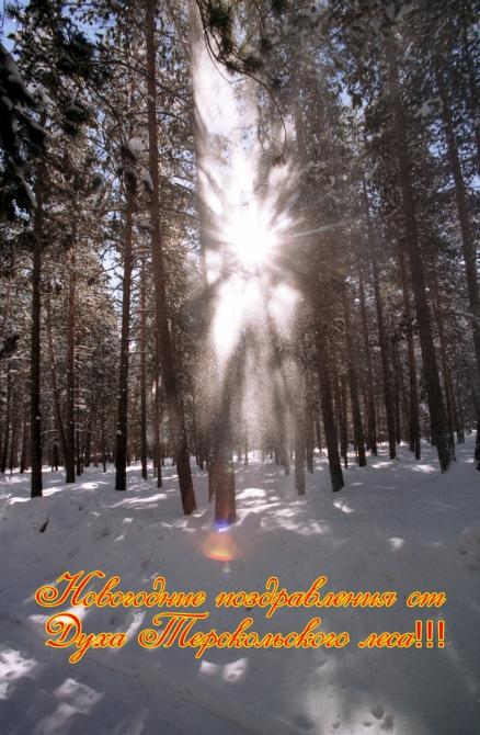 С Новым годом! (Горные лыжи/Сноуборд)