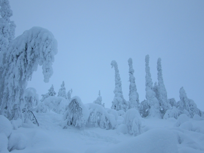 Волшебная зимняя Кандалакша (Туризм, кольский полуостров, лыжный поход)