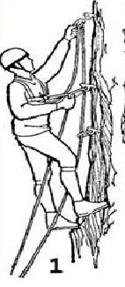 """Передвижение на искусственных точках опоры (ИТО). Скальные фифы. Способы и средства передвижения на ИТО: """"зальцуг"""", стремена, лесенки, клифы. (Альпинизм, школа ито, михаил ситник)"""