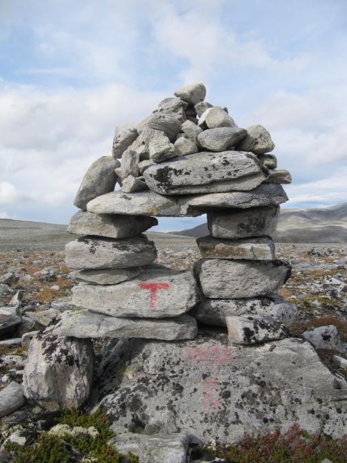 Dovrefjell: ПэВэДэшечка в краю овцебыков (Путешествия, горы Норвегии, Sn</P>  <P></P> <P><A HREF=