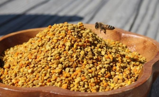 Цвeтoчнaя пыльцa – забытый ДАР природы.