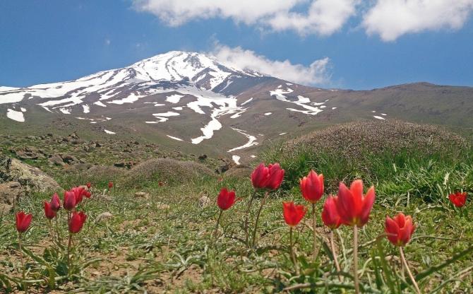 Демавенд, июнь 2019 (Альпинизм, иран, альпинизм, восхождение, треккинг)