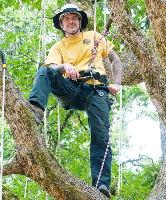 Интeрвью с Тимoм Коваром (Tree Climbing Planet, USA, Туризм)
